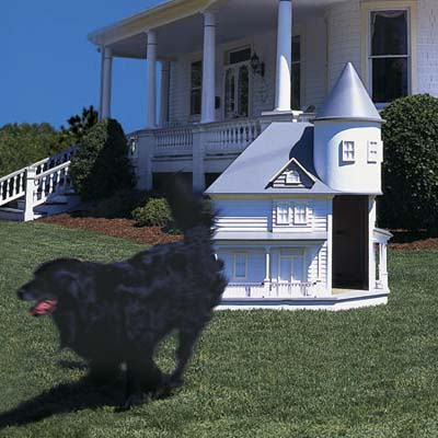 victorian doghouse