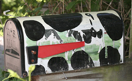 Animal Print mailbox