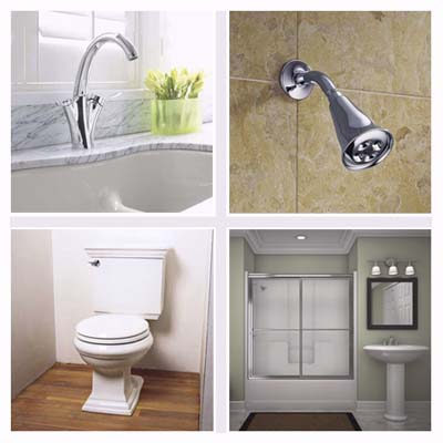 kitchen faucet, showerhead, toilet, bath sink and shower door