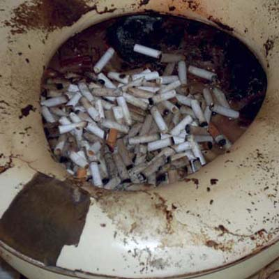 toilet bowl filled with cigarette butts