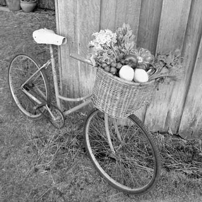 bike with a basket full of fresh vegetables leaning against a wall