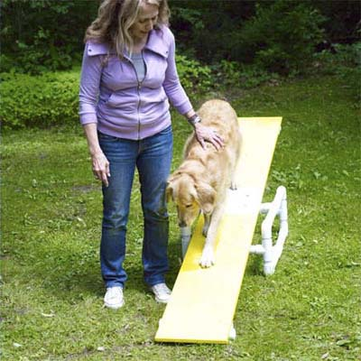 woman standing next to dog on teeter-totter