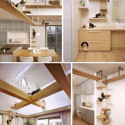 Japanese Plus-Nyan House designed for cats and humans