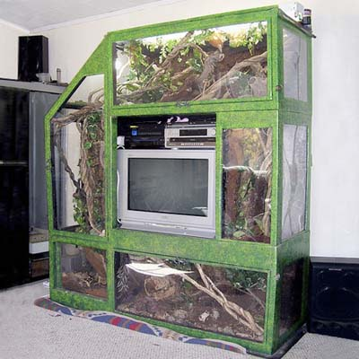 vivarium for reptiles built around a television