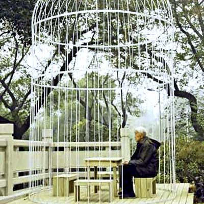 human birdcage