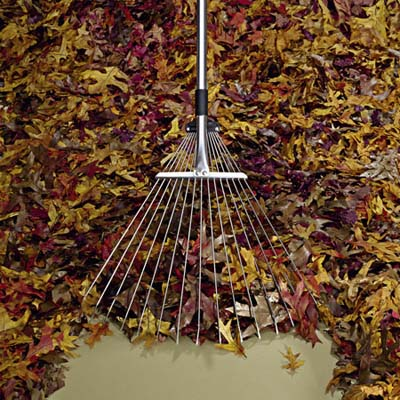 garden rake with leaves