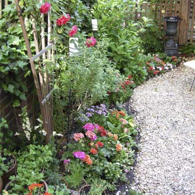Garden beds filled with flowers and overgrown plants