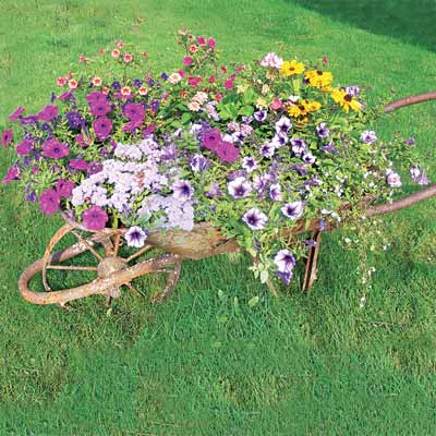 A re-purposed wheelbarrow