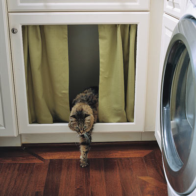 cat stepping out of litter box hidden by curtained cabinet