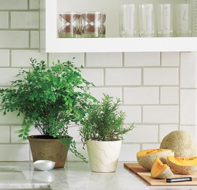 white airy kitchen with subway tile backsplash with tinted grout