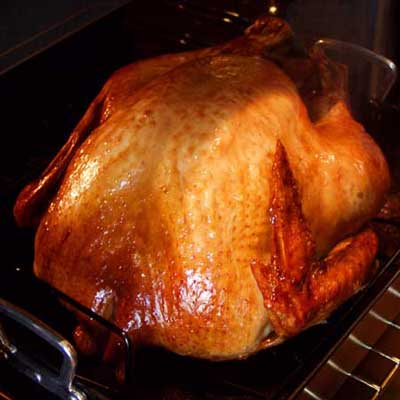 large turkey roasting in an oven pan