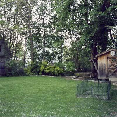 bare back lawn