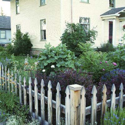 fence with front yard plants