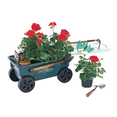 ames lawn buddy garden cart