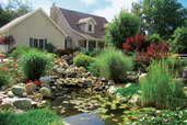 full view of beautiful monster pond built behind readers home