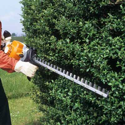 hedge clippers