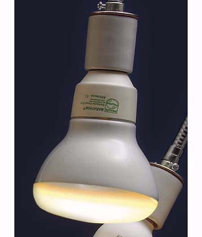 Philips compact fluorescent for recessed lighting