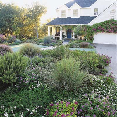 lawn-less garden for major curb appeal