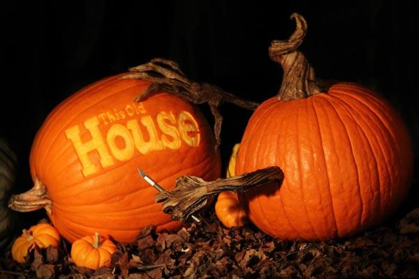 editors' pick favorite pumpkins