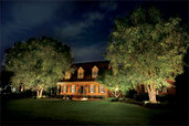 house landscaped with exterior lighting