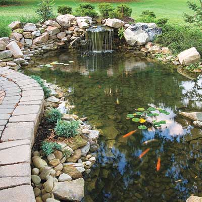 a backyard pond