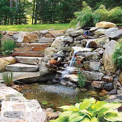Solutions to common pond problems everything you need to for Pond problems