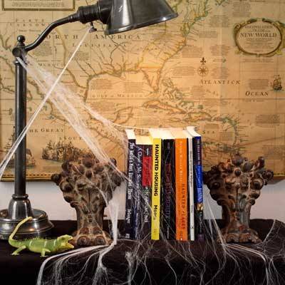 Haunted Library salvage style DIY Halloween Party Decoration