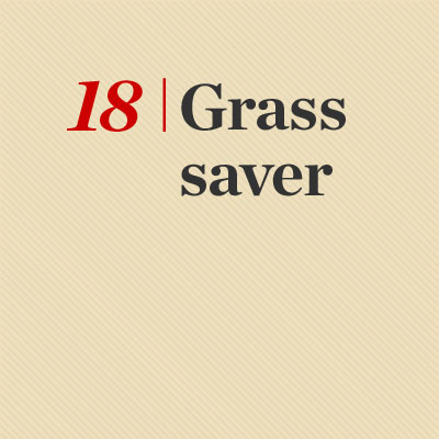 Grass Saver  reader tip to save time and money