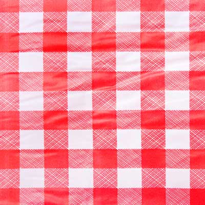 red and white checked vinyl tablecloth