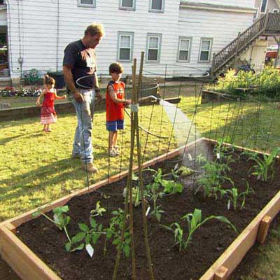 Grow Vegetables in a Raised Garden Bed for a great summer projects