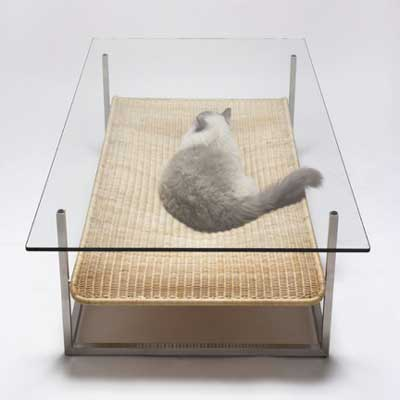 Glass table with wicker cat bed-shelf