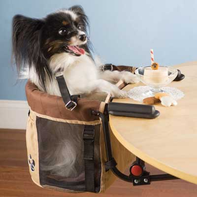 Pet high chair clips onto table