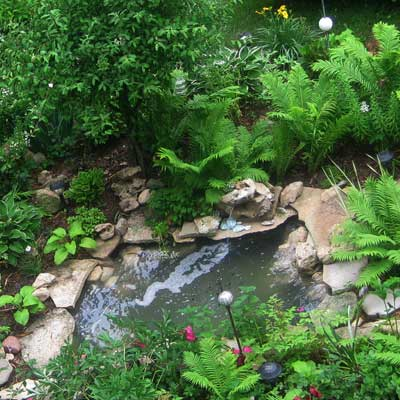 a backyard pond in Brownsville, WI