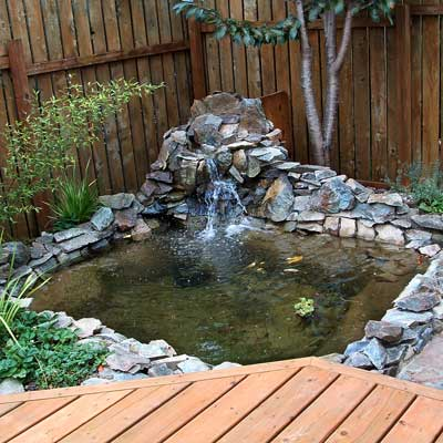 a backyard pond in Port Orford, OR