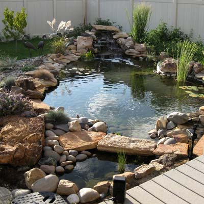 a backyard pond in Fruita, Colorado