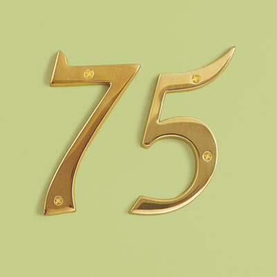 19th Century style shiny brass house numbers