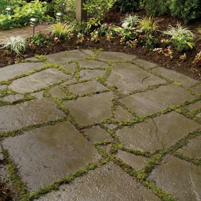 stone patio with plants in between pavers