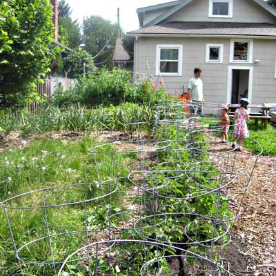 community garden