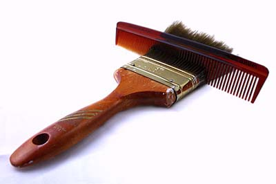 comb from grooming paint brush bristles