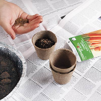 person putting coffee grounds into plant soil 