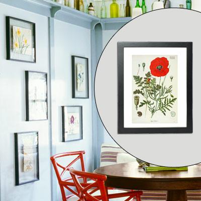 botanicals artwork in floating frames