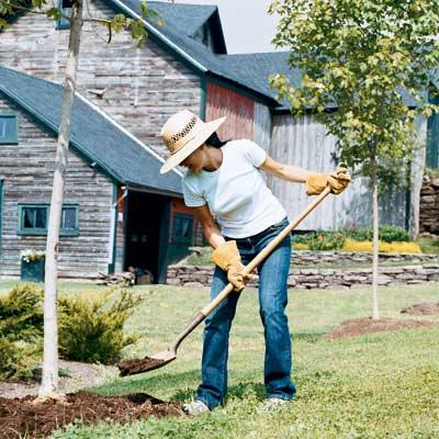 woman shoveling dirt to make a rain garden in yard