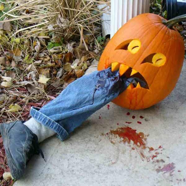 pumpkin carving contest pumpkin mummy