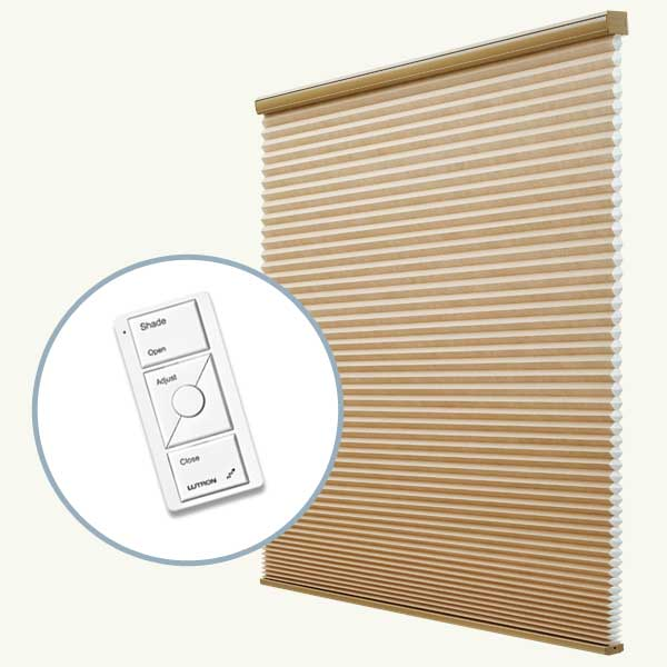 Top 100 Products 2012 tech remote control window shades