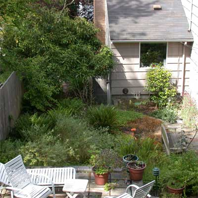 From Shady to Sunny: Before for the this old house reader remodel yard and garden winners 2012