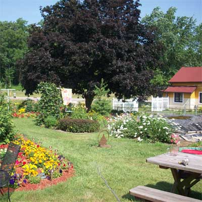 Surrounded by Flowers: After for the this old house reader remodel yard and garden winners 2012