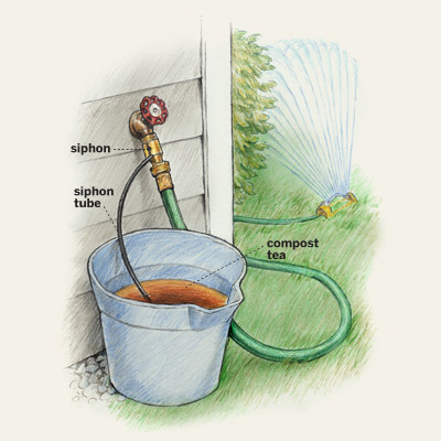 compost tea in a bucket illustration