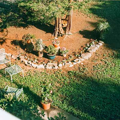 before photo of garden and yard makeover