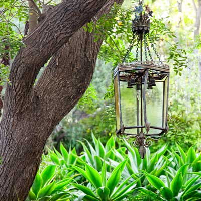 iron lighting pendant hanging from tree over bed of agaves 