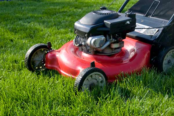 lawn mower on lawn, homeowner survival skills